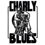 Charly Blues Discos - Record Store Image