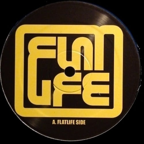 Flatlife Records - Record Store Image