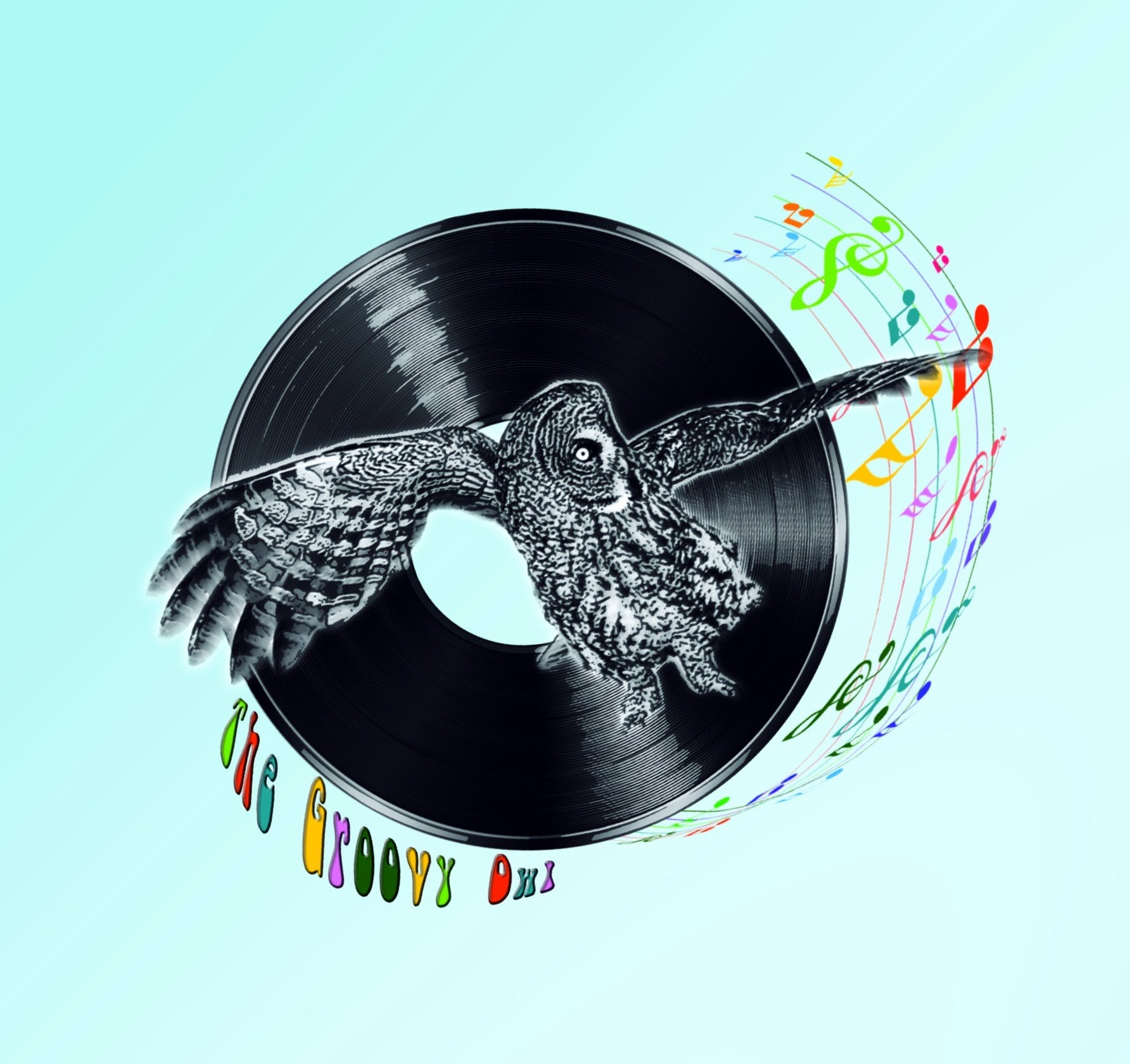 The Groovy Owl - Record Store Image